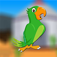 AvmGames Male Parrot Escape