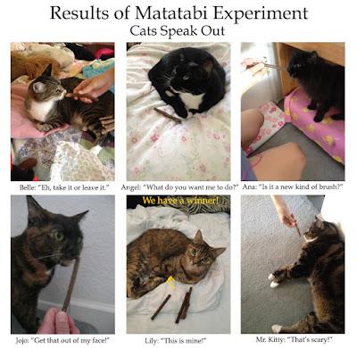Matatabi results.