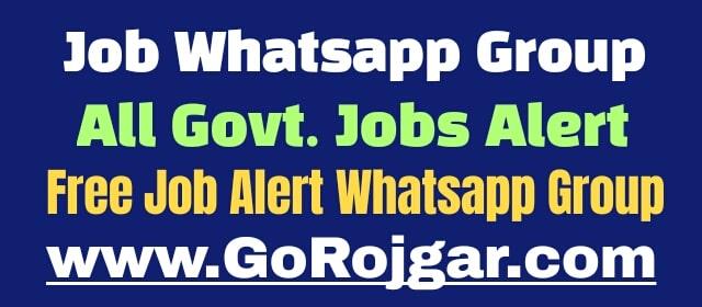 Job Whatsapp Group Link  Free Job Alert 2020 Whatsapp Group Link 2020  Job alert whatsapp group link india  Job Update Whatsapp Group Link