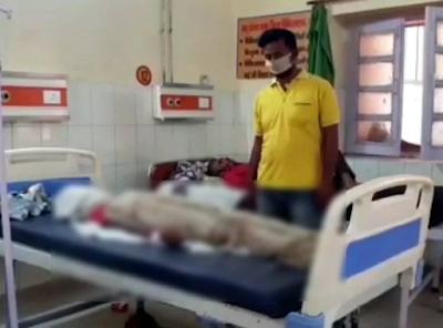 boy death by sneck biting in quarenteen centre