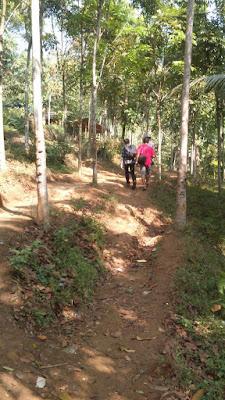 Gunung Munara Jalur Awal Pendakian