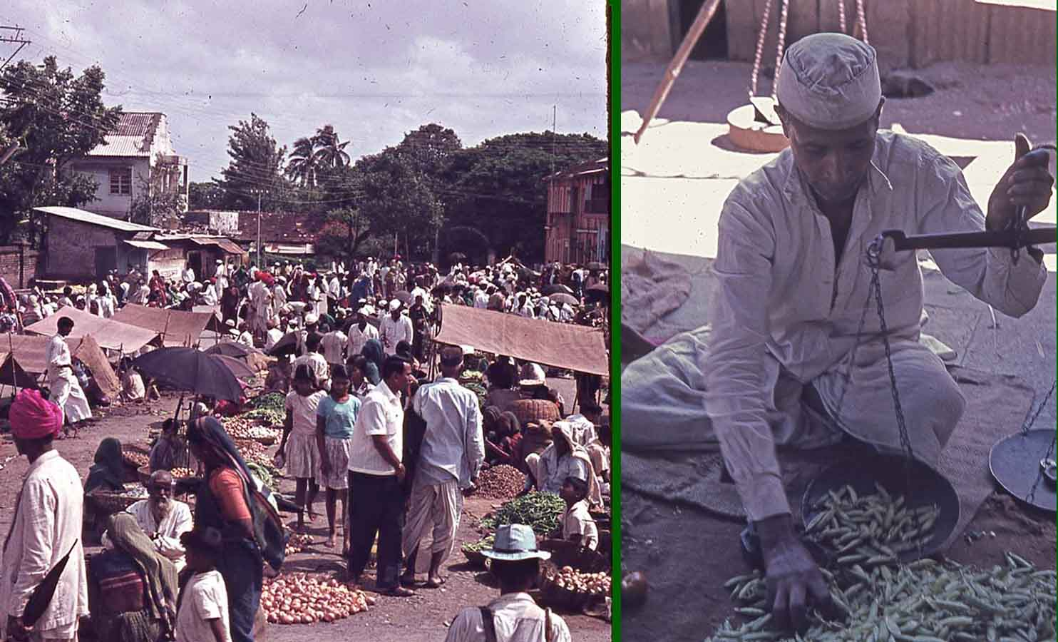 People inspecting vegetables and fruits along with man selling green beans