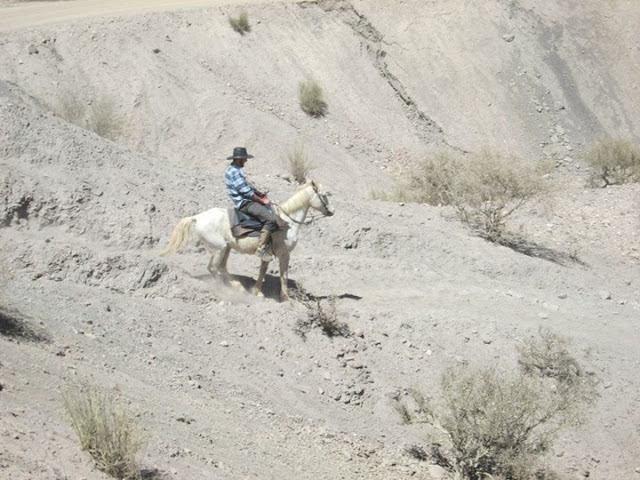 Horse Riding Tupiza Bolivia