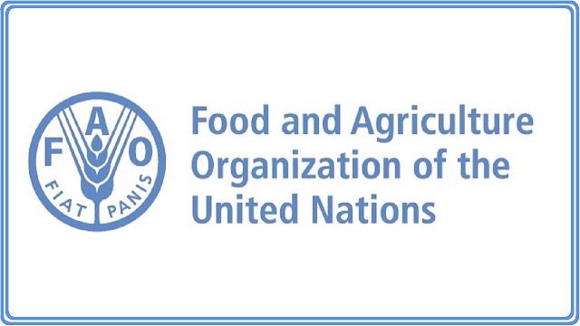 فرصة الحصول على تدريب مدفوع الأجر في منظمة الأغذية والزراعة FAO