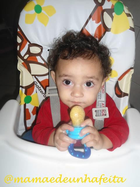 Alimentador de frutas e legumes For Baby Pais e Filhos