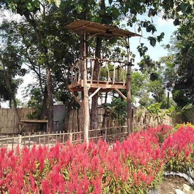 Taman Bunga Bloemencorso