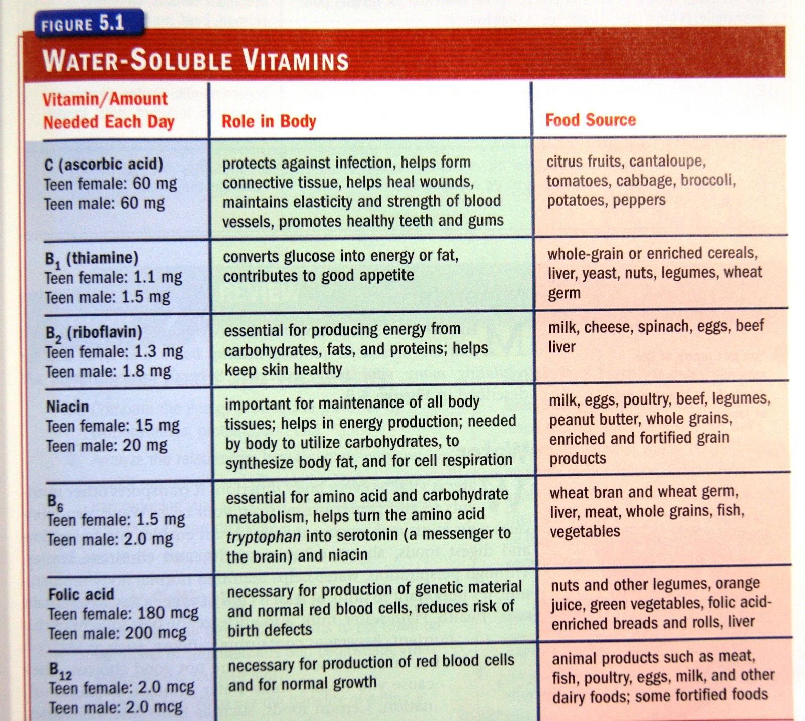 List Of Vitamins And Minerals