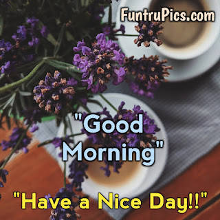 Good Morning Sunday Images,Pictures and Photos