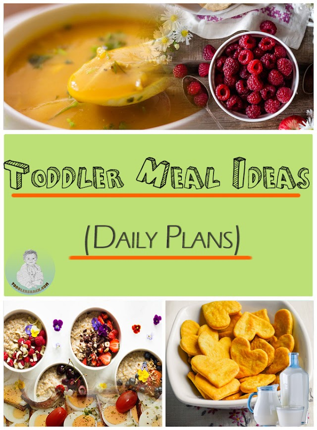 Toddler meal ideas (Daily plans)