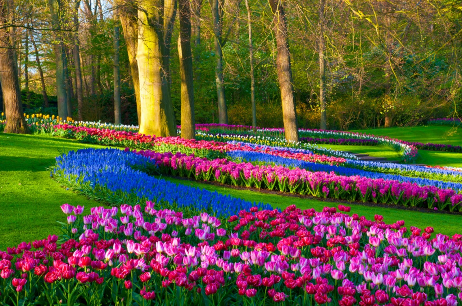 Most Beautiful Spring Wallpapers Free Download All Hd