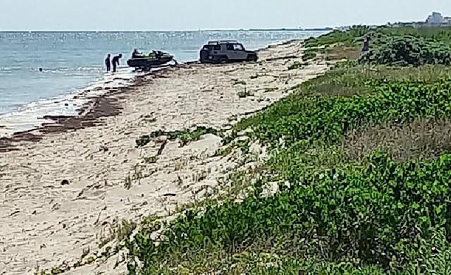 Vehículos transitan en zona de anidación de tortugas en Telchac Puerto