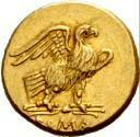 Moneda de oro de 40 asses - 211 a.C. - Crawford 44/3 reverso