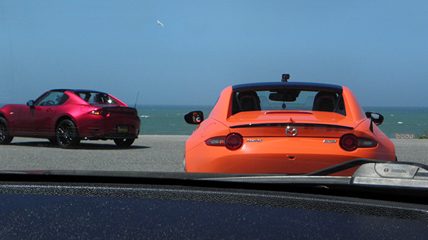 Burgundy and Orange Miatas with Pacific Ocean and Gull