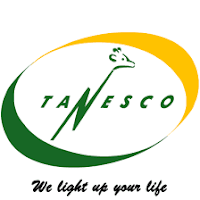 TANESCO: Additional Names Called for Job Interview