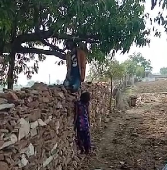 झालावाड़/राजस्थान-- पेड़ पर एक ही रस्सी से लटके मिले प्रेमी युगल के शव