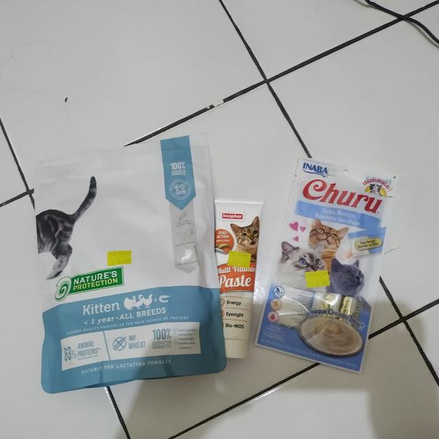 asupan untuk virus panleu distemper pada kucing