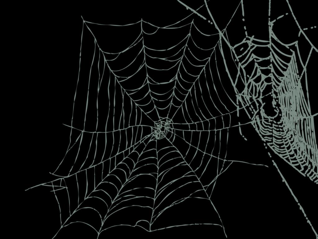 Wallpaper Db Cobweb Background