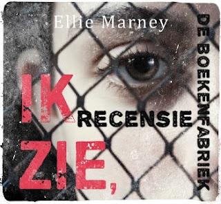Recensie van De boekenfabriek over Ik zie, ik zie van Ellie Marney voor de Hebbanbuzz