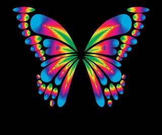 kupu-kupu pelangi
