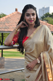 Angana Roy in Silk Saree at Teaching Tree Carnival .xyz 005.JPG