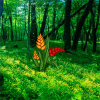 Play BigEscapeGames-Find the G…
