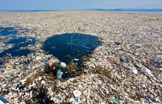 contaminacion por plastico