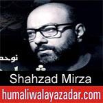 https://www.humaliwalayazadar.com/2019/09/shahzad-mirza-nohay-2020.html