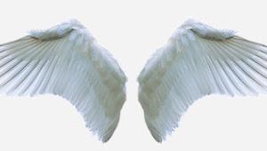 Cerpen Malaikat Bergelang Tasbih
