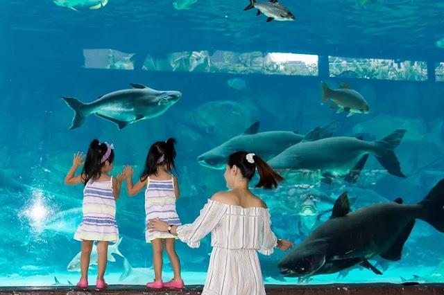 5 destinations for children in Singapore