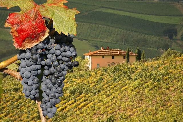 17. Tuscany Regions of Italy