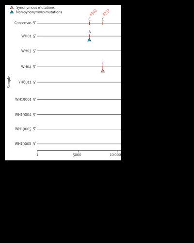 Genom daripada Wuhan