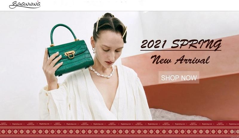 Baginning.com: Ladies Handbags - my inspiration