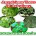Auspicious Trees In Indian Astrology