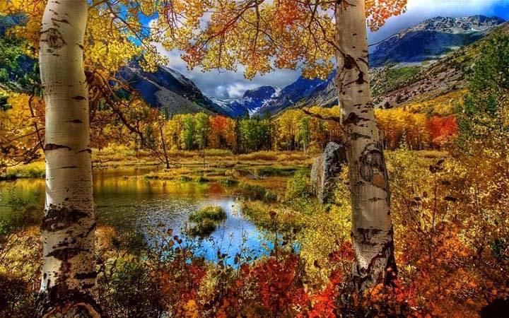sonbahar resimleri manzaralı