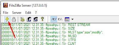 FileZilla Connect To Server