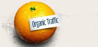 What is organic traffic and how to get organic traffic to your blog