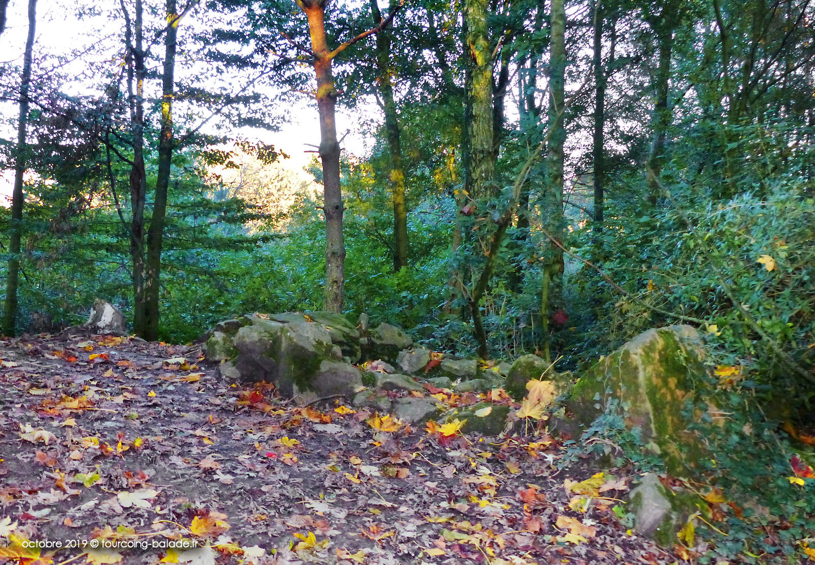 Parc de l'Yser, Neuville-en-Ferrain - Fauchage tardif