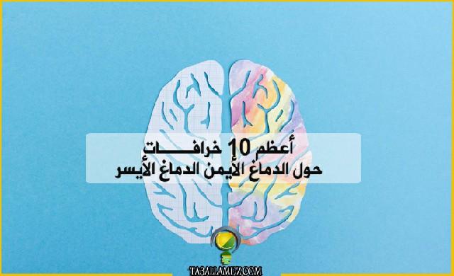 10 خرافات حول الدماغ الأيمن الدماغ الأيسر