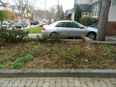 Toronto Bedford Park Fall Front Yard Cleanup After by Paul Jung Gardening Services Inc.--a Toronto Gardening Company