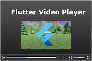 flutter video player example