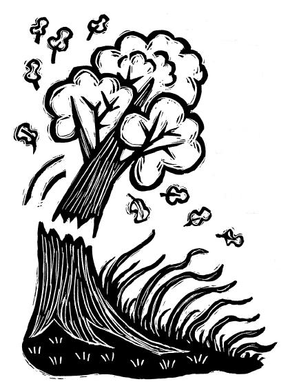 Cerita Fabel Bahasa Inggris, Fabel Bahasa Inggris, Cerita Fabel Bahasa Inggris dan Terjemahannya, Fabel Bahasa Inggris dan Artinya, Cerita Fabel Phon dan Alang-alang. | www.belajarbahasainggris.us