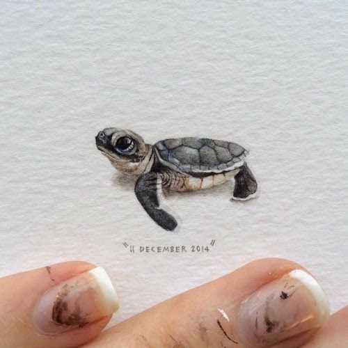 04-Leatherback-Turtle-Lorraine-Loots-Miniature-Paintings-Commemorating-Special-Occasions-www-designstack-co