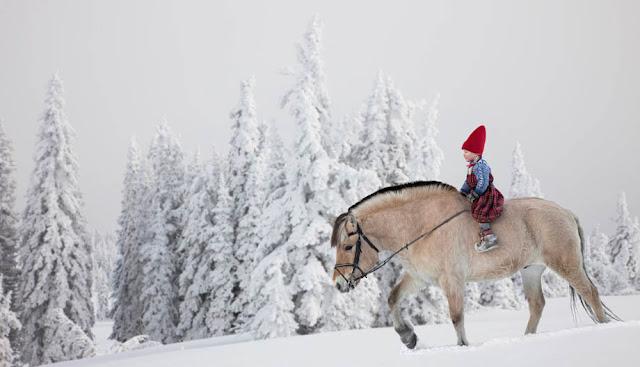 Winter Magic by Per Breiehagen