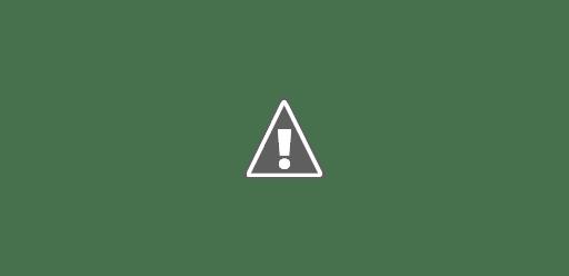 مراجعة Pixel 4a هاتف Google