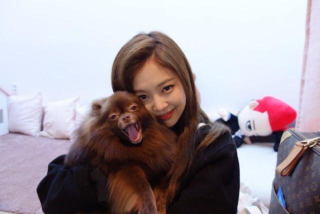 Fans Appreciate The Cuteness Of Blackpink Jennies Pet Dog -7074