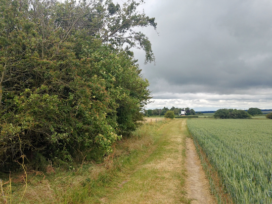 The footpath mentioned in point 2 above Image by Hertfordshire Walker released via Creative Commons BY-NC-SA 4.0