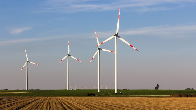 IRENA Council Meets as Agency Renews Call for Recovery Built around Energy Transformation
