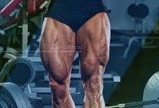 how-to-enlarge-and-build-thigh-muscles