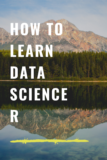 R data science