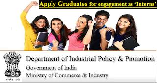 dipp-graduates-interns-jobs-2017